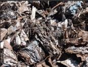 ТРАНСМЕТАЛ - Услуги - Черни метали